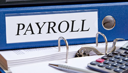 payroll resources graphic